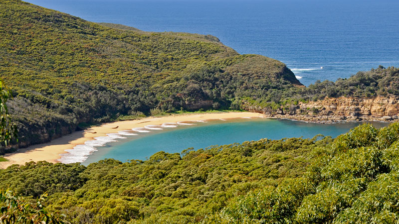 Bouddi National Park - Accommodation Gold Coast