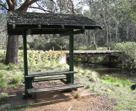 Barrington Tops State Forest - Accommodation Gold Coast