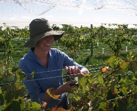 Kingsdale Wines - Accommodation Gold Coast